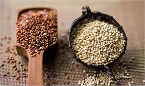 quinoa variety